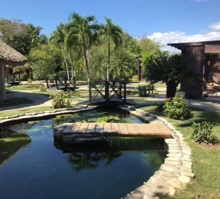 Der Garten im Spa Dreams La Romana Resort & Spa