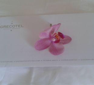 Ein lieber Gruß auf dem Bett Hotel Grecotel Eva Palace