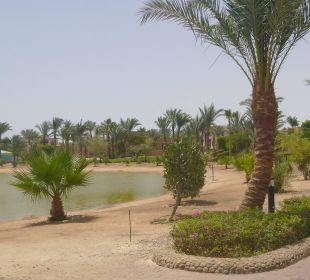 Teich zur Gießwasseraufbereitung
