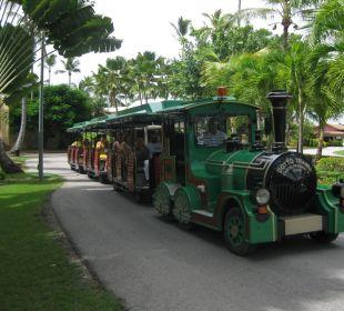 Die Bimmelbahn