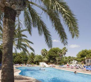 Pool OLA Aparthotel Cecilia