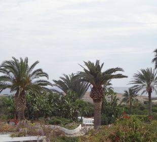 Garten Hotel Nissi Beach Resort