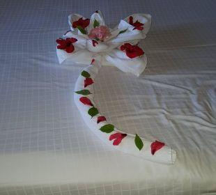 Blume Stella Di Mare Beach Resort & Spa Makadi Bay