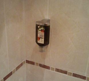 Dusche mit Seifenspender Das Hotel Eden