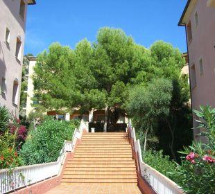Außenbereich  Hotel Don Antonio