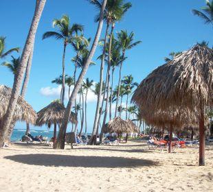 sirenis cocotal beach resort casino & aquagames bewertung