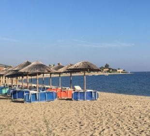 Liegen und Schirme vom Hotel Hotel Possidona Beach