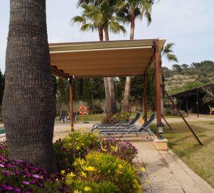 Blumen im April Agroturismo S'Hort de Son Caulelles