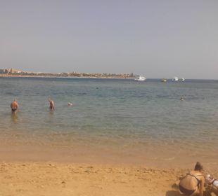 Strand 3