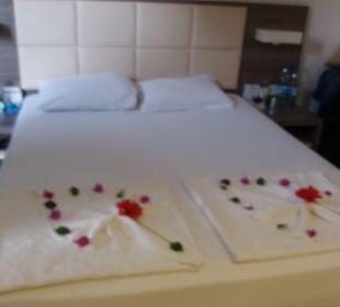 Zimmer Hotel Club Kastalia