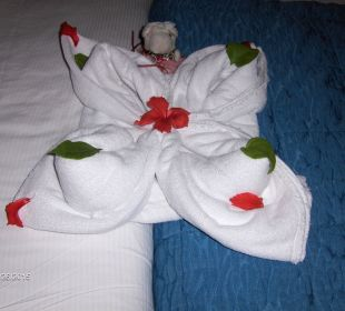 Second towel art Hotel Reef Oasis Blue Bay