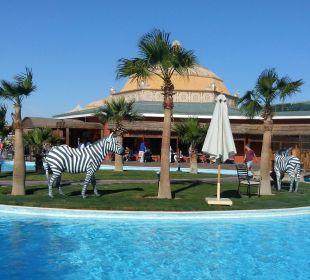 Blick aus dem Restaurant Jungle Aqua Park