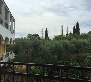 Ausblick vom Zimmer Hotel Paradise Corfu