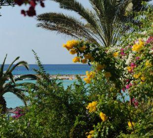 Blick über den Garten zum Strand
