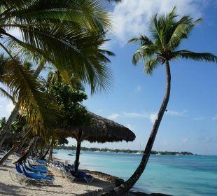 Strandlandschaft Dreams La Romana Resort & Spa
