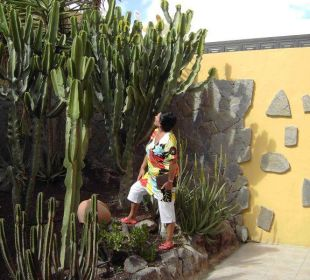 Teil der Gartenanlage Hotel Rocamar Beach