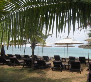Liegewiese am Strand Hotel Mukdara Beach Villa & Spa Resort