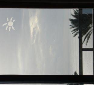 Künstliche Sonne nicht nötig
