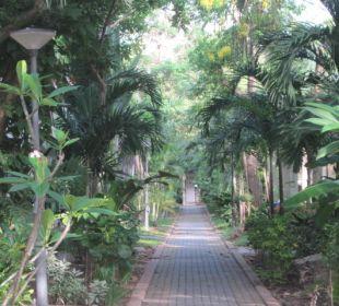 Netter Garten Hotel Pattaya Garden