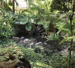 Innenbereich Garten Grand Bahia Principe El Portillo