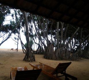 Strand Hotel Ranweli Holiday Village