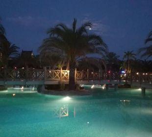 Pool Hotel Royal Wings