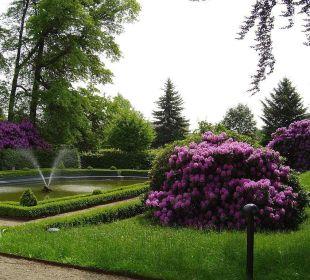 Blick in Barockgarten von Schloss Schweinsburg Hotel Schloss Schweinsburg