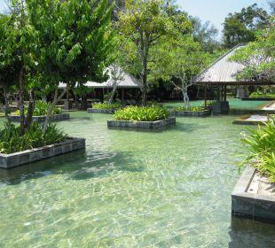 Sunset Pool Hotel Tanjung Rhu Resort