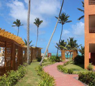 Der Weg zum Strand, links Pool VIK Hotel Cayena Beach Club