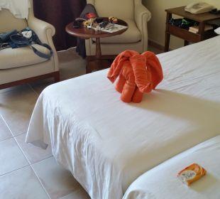 Zimmer SBH Hotel Costa Calma Palace