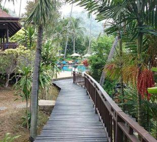 Weg durch den Garten Hotel Coral Cove Chalet