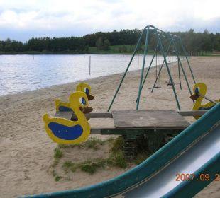 Der Strand vom Badesee Alfsee Ferien- und Erholungspark - Ferienhäuser