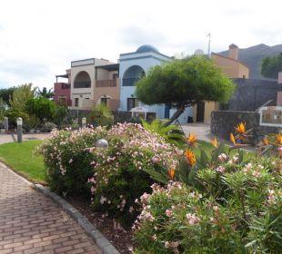Bepflanzung Hotel Luz Del Mar