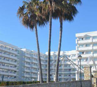 Blcik auf das Hotel Olimarotel Gran Camp de Mar