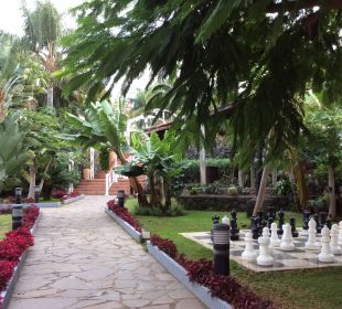 Garten  Hotel Riu Garoe