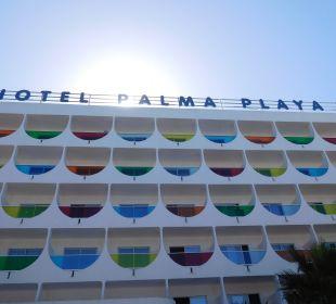 Hotel im neuen Gewand Hotel Palma Playa - Cactus