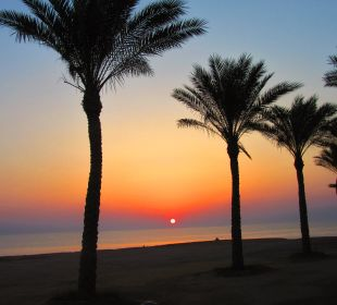 Morgens 5 Uhr  Hotel Steigenberger Coraya Beach