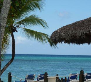 Ausblick von unserer Liege Dreams La Romana Resort & Spa