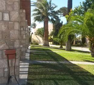 Gartenanlage Hotel Horizon Beach Resort