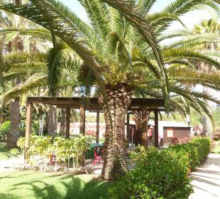Miniclub Dunas Suites&Villas Resort