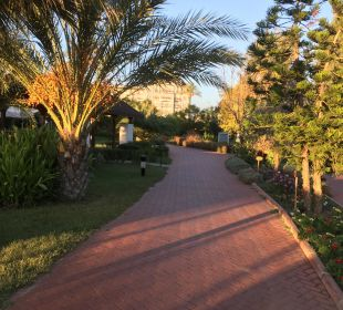 Garten Sunis Hotels Elita Beach Resort & SPA