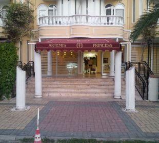 Widok wejścia z ulicy Hotel Artemis Princess