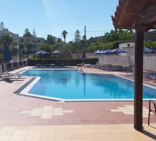 Pool Hotel Dimitra