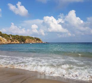 Strand  COOEE Cala Llenya Resort Ibiza