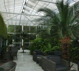 Wintergarten der Bar Hotel Hacienda San Jorge