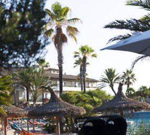 Pool und Palmen allsun Hotel Eden Playa