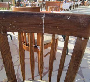 Vogelkot auf den Stühlen
