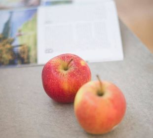Gesunde, frische Äpfel im Zimmer Hotel Hanswirt