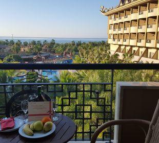 Ausblick von Balkon  Hotel Royal Dragon