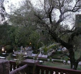Blick von Terrasse in den Hof